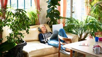 Interior, sun, plants, relax, music, computer,