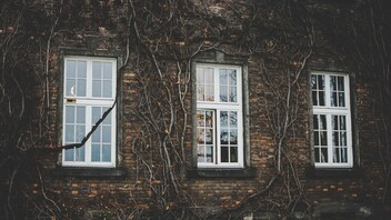 Facade, Plants, Windows, Outer wall