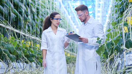 Grodan, Precision Growing, Agriculture, Plants,  People